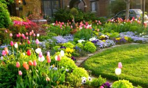 Garden Decoration Tips You Need to Try