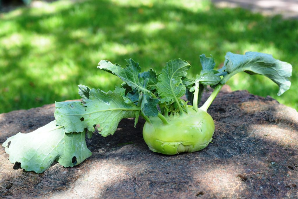 And Don't Forget About Kohlrabi